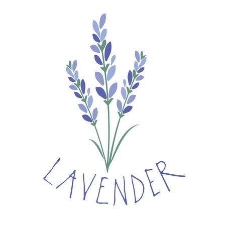 Lavender flower. Logo design. Text hand drawn. Banque d'images - 106124539
