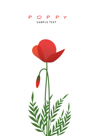 Stems, leaves and poppy flowers isolated on white background.