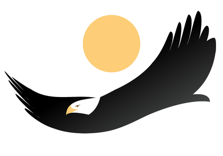 American eagle or white-headed eagle, flying isolated on the sun on white background