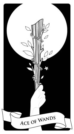 Aces of Tarot Cards. Wands. Hand holding a rod surrounded by leaves and flowers on black background Иллюстрация