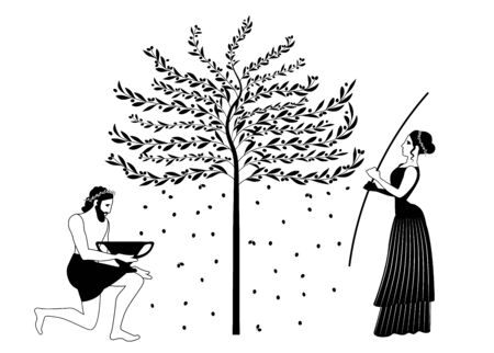 Woman raking an olive tree and man picking olives. Ancient Greece style