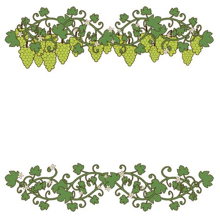 Ornamental illustration of grapes and grape leaves with flowers, isolated on white background