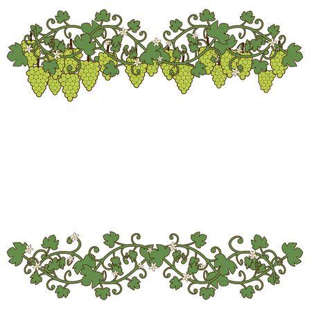 Ornamentale Illustration von Trauben und Weinblättern mit Blumen, isoliert auf weißem Hintergrund