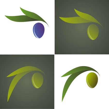 Green and purple olives with olive leaves in various versions, stylized and simplified