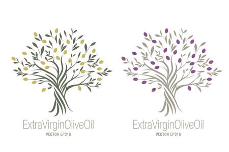 Olive Tree. Extra virgin olive oil symbol. Symbol of culture and Mediterranean food isolated on white background 矢量图像