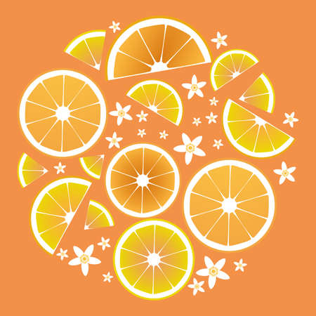 Citrus collection. Slices of orange and orange tree leaves and flowers 矢量图像