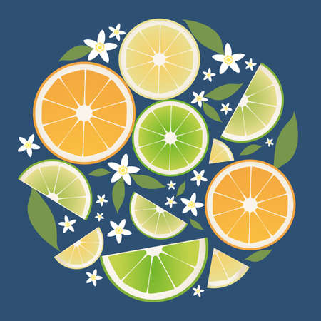 Citrus collection. Slices of orange, lemon, lime and orange leaves and flowers 矢量图像