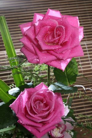 table arrangement with two pink roses and drops