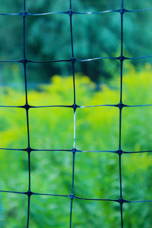 Blurred abstract background texture. Cropped shot of mesh fence. Gardening concept.