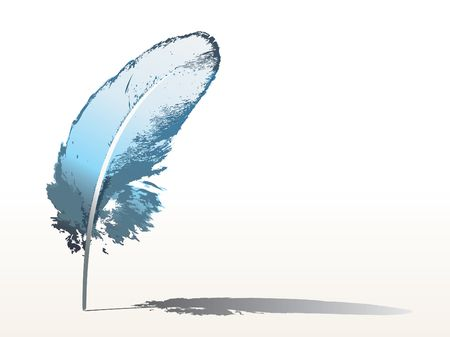 blue feather photo
