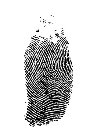 detailed finger print - vector illustration Vector