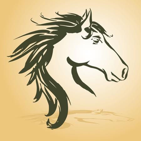 paardenhoofd: paard hoofd afbeelding Stock Illustratie