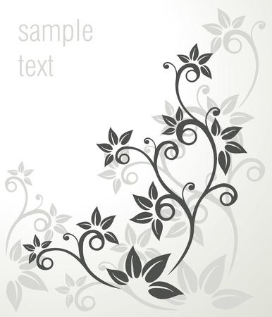 floral ornament: vector vintage frame