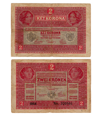 high resolution vintage hungarian banknote from 1917 Editorial