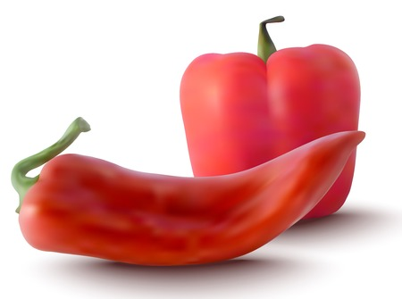 peppers: realistic red peppers - vector illustration