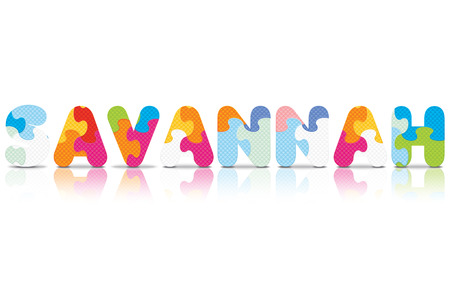 SAVANNAH written with alphabet puzzle - vector illustration Vector