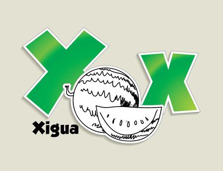 Fruits and vegetables alphabet - letter X - vector eps 10 illustration Vector