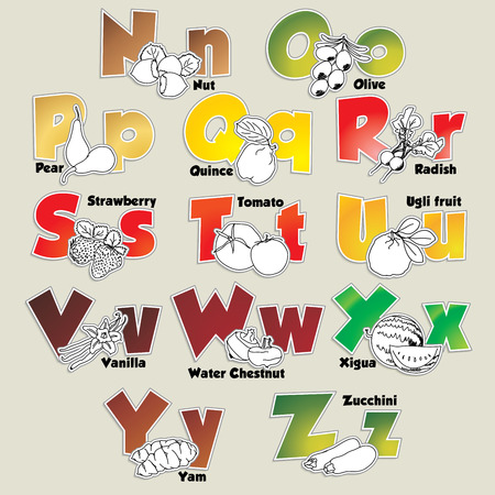 Fruits and vegetables alphabet from N to Z Vector