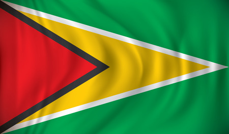 waving: Flag of Guyana - vector illustration