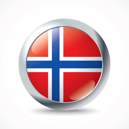 jan: Jan Mayen flag button - vector illustration