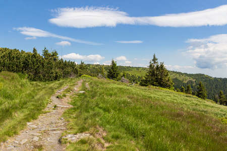 Panoramic view of mountain landscape, Jeseniky mountains, Czech Republic. Mountain meadows around hiking trail on rounded ridge. Summer sunny day.