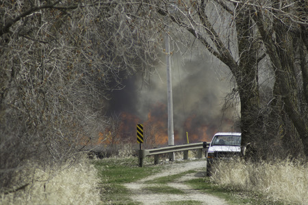 prescribed: At a marsh a prescribed burn sends flames high into the air as part of control of invasive cattails.