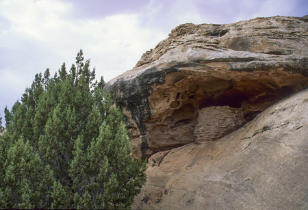granary: An ancient Native American granary tucked under an overhanging cliff at Canyon Lands National Park. Stock Photo