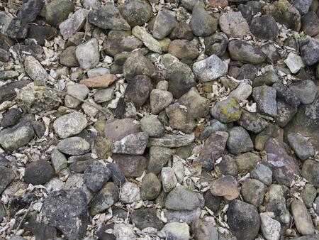 rock pile: Rock pile alongside an old farm field. Stock Photo