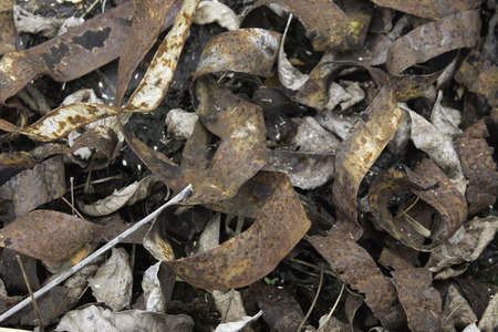 Twisted, rusted, iron straps in a pile