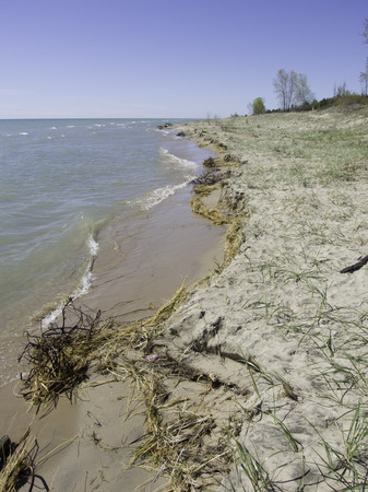 This Great Lakes beach sand is quickly eroding away, washing out the beach grass with it.