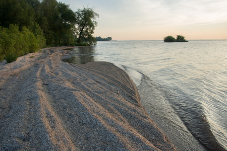 invasive species: Windrowed Zebra Mussel (Dreissena polymorpha) shells have been piled up by waves on the shores of a lake.  This is a familiar sight on the Great Lakes.