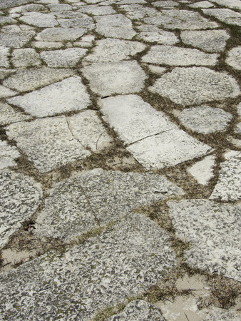 flagstone: Limestone flagstone patio with grass growing up between the flat rocks. Stock Photo