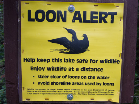 stay alert: LOON ALERT sign warns boaters and fisherman to stay away from Common Loons to keep them safe. Stock Photo