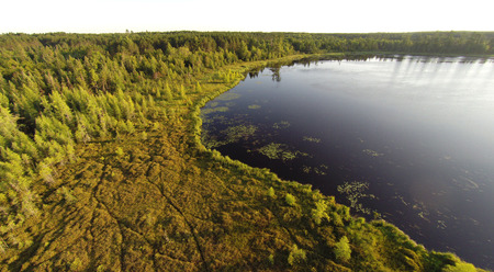 aerial photograph: Aerial view of a moss filed bog on a northern Wisconsin Lake