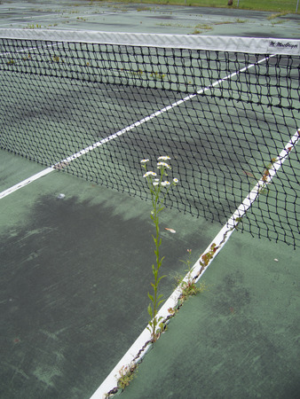 degrade: Budget cuts mean the physical fitness program and this tennis court and net have been neglected.  So bad is the problem large cracks are growing grass and other weeds.