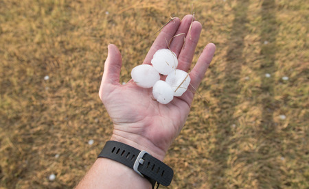 Four golf ball sized hail stones cover the hand of a large adult, who holds them out over the hail covered ground.