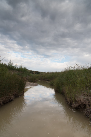Muddy brown water of a small creek in the Great Plains, surrounded by bulrushes and grass and dark clouds in the sky.
