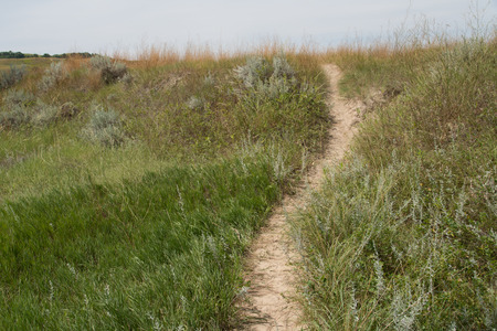 great plains: A winding trail, disappearing over the top of hill, used by American Bison (Buffalo) and other wildlife in the Great Plains Stock Photo