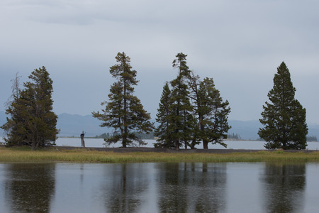 rain shower: Yellowstone Lake and adjacent pond at Gull Point during a light rain shower.  Rain drop ripples dot the calm water of pond surface. Stock Photo