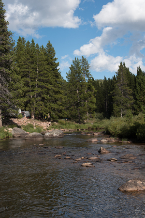 The South Tongue River is a trout stream in Wyoming's Bighorn Mountains.  This image was taken at the Prune Creek Campground in the National Forest. 版權商用圖片