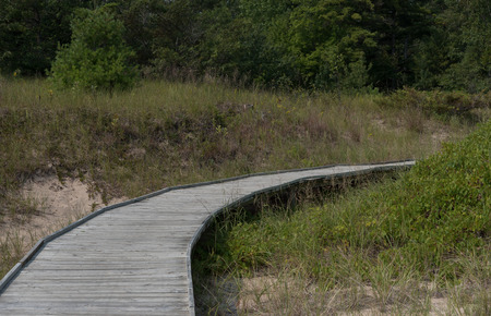 A board walk leads from the beach to the woods along Lake Michigan to keep the dune plants and sand from eroding away.