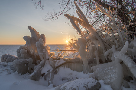 froze: Wide-angle shot of the spray form the lake that froze onto the rocks, branches, plants and everything else. Stock Photo
