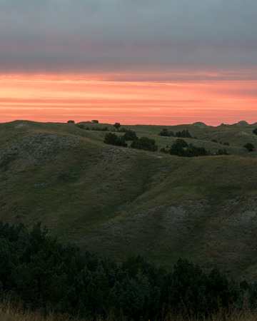 Orange glow of sunset over the rolling shortgrass prairie grasses, and Rocky Mountain Junipers of the Great Plains in South Dakota.