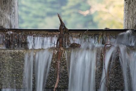 Waters stromen over de overlaat van een kleine betonnen dam die blokken Hartman Creek en vormt een klein meertje.