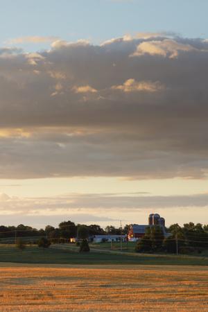 De vroege ochtend licht laat dit gebied van vers geoogste wintertarwe goudgeel. Op de achtergrond in een boerderij met een schuur en silo's, terwijl het heeft een paar wolken.