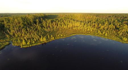 Lake maakt plaats voor veen, naaldboom moeras, dan witte pijnbomen en het noorden van hardhout bos.