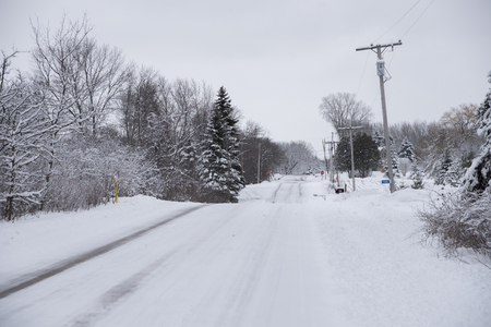 A recently plowed country road after a snowstorm.  Snow sticks to the tree branches in this winter scene.