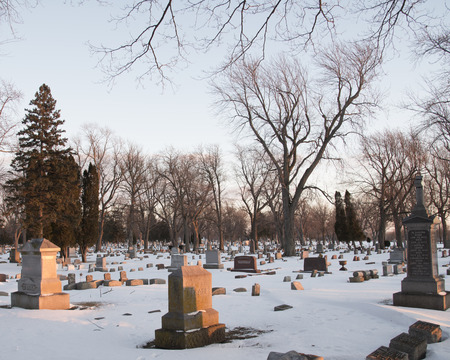 Warm light catches the headstones, and grave markers of a cemetery with trees and snow in winter.