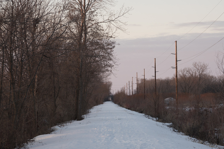 A snow covered hiking trail bordered by trees on one side and powerlines and fields on the other, bathed in the last light of the day.