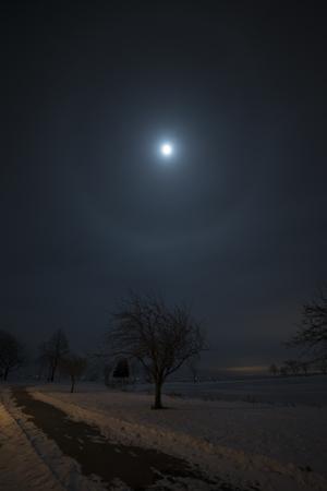 Moondog (maan halo) op een koude winternacht, over een bevroren Lake Winnebago. Het wandelpad op de voorgrond wordt gedeeltelijk verlicht door de straatverlichting van de stad Oshkosh.
